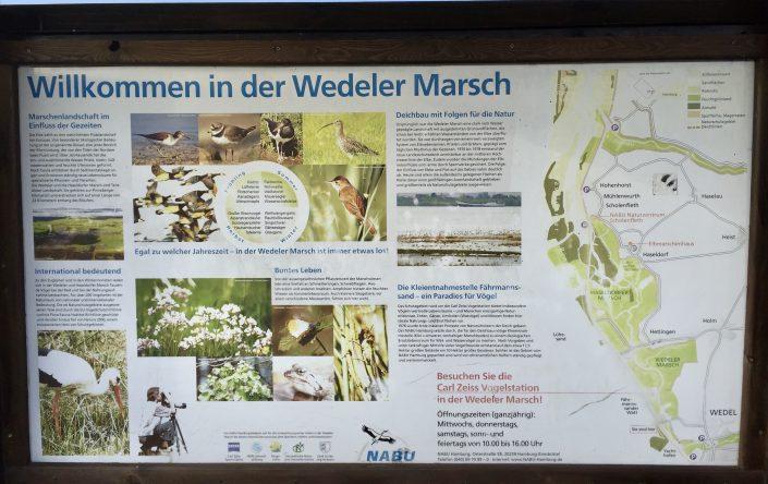 Freie-Demokraten-FDP-Stadtverband-Wedel-Umwelt-Marsch